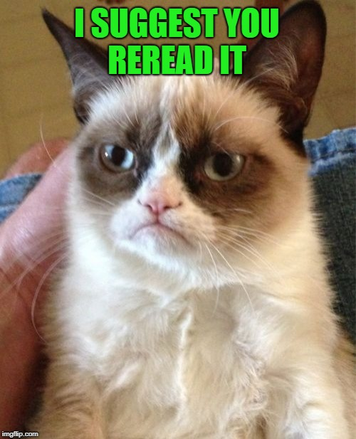 Grumpy Cat Meme | I SUGGEST YOU REREAD IT | image tagged in memes,grumpy cat | made w/ Imgflip meme maker