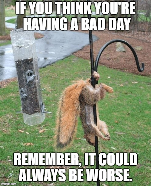 Image result for having a bad day""