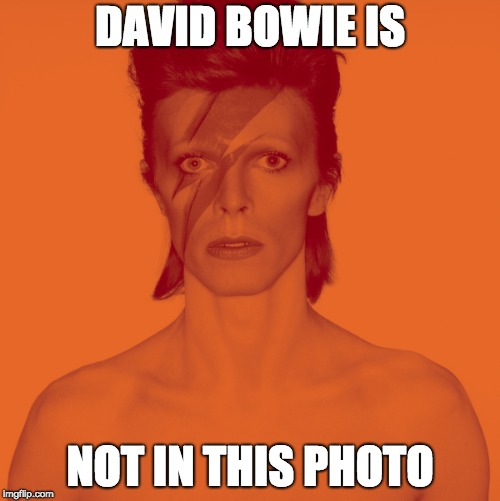 DAVID BOWIE IS NOT IN THIS PHOTO | image tagged in david bowie is | made w/ Imgflip meme maker