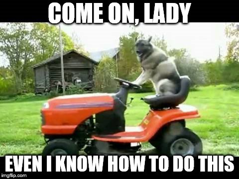 COME ON, LADY EVEN I KNOW HOW TO DO THIS | made w/ Imgflip meme maker