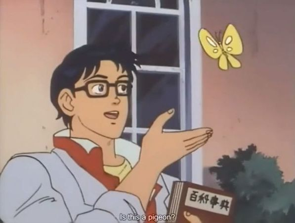 Oblivious anime man butterfly Meme Template Thumbnail