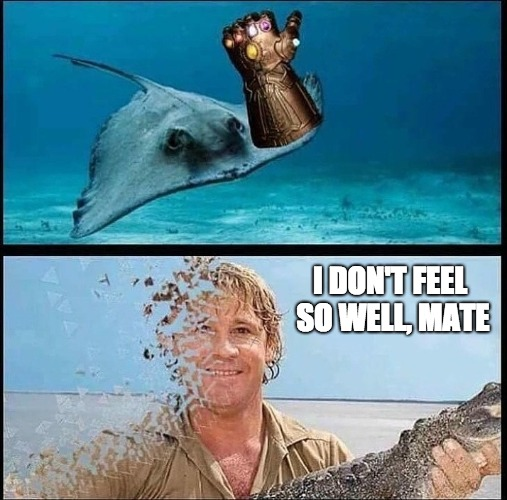 Like If You Get It | I DON'T FEEL SO WELL, MATE | image tagged in avengers infinity war,funny,thanos | made w/ Imgflip meme maker