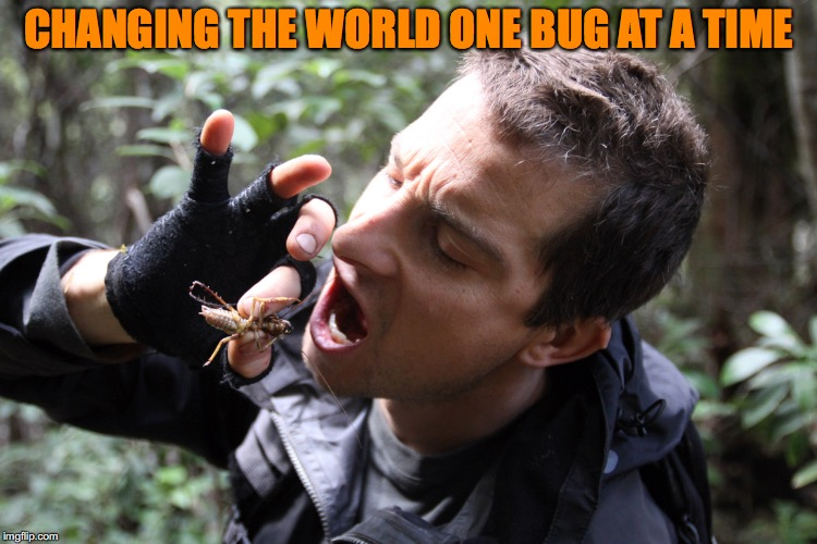 CHANGING THE WORLD ONE BUG AT A TIME | made w/ Imgflip meme maker