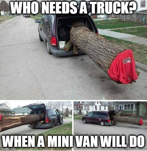 WHO NEEDS A TRUCK? WHEN A MINI VAN WILL DO | image tagged in van,tree,truck | made w/ Imgflip meme maker