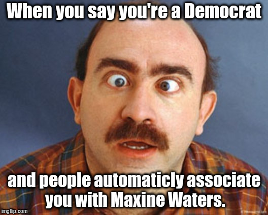 Dumb Voter | When you say you're a Democrat and people automaticly associate you with Maxine Waters. | image tagged in dumb voter | made w/ Imgflip meme maker
