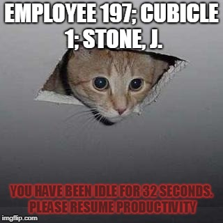 Ceiling Cat Meme | EMPLOYEE 197; CUBICLE 1; STONE, J. YOU HAVE BEEN IDLE FOR 32 SECONDS. PLEASE RESUME PRODUCTIVITY | image tagged in memes,ceiling cat | made w/ Imgflip meme maker
