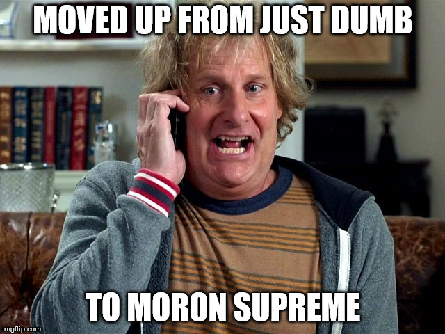 MOVED UP FROM JUST DUMB TO MORON SUPREME | image tagged in stupid liberals | made w/ Imgflip meme maker