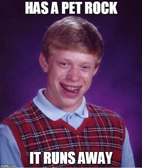 Bad Luck Brian Meme | HAS A PET ROCK IT RUNS AWAY | image tagged in memes,bad luck brian | made w/ Imgflip meme maker