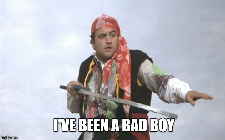 Pirate Belushi | I'VE BEEN A BAD BOY | image tagged in pirate belushi | made w/ Imgflip meme maker