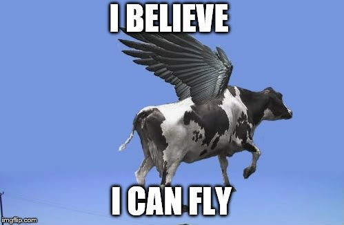 I BELIEVE I CAN FLY | image tagged in flying | made w/ Imgflip meme maker