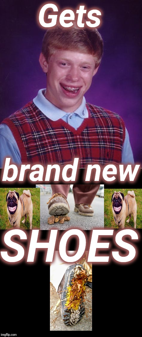 New Shoes | Gets SHOES brand new | image tagged in bad luck brian,shoes,dog poop | made w/ Imgflip meme maker
