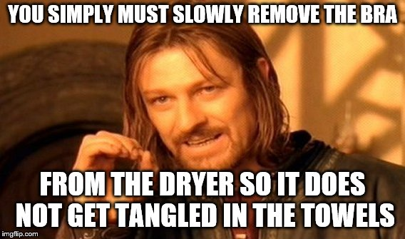 Romance novel? | YOU SIMPLY MUST SLOWLY REMOVE THE BRA FROM THE DRYER SO IT DOES NOT GET TANGLED IN THE TOWELS | image tagged in memes,one does not simply | made w/ Imgflip meme maker