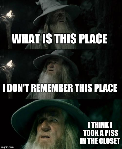 Confused Gandalf Meme | WHAT IS THIS PLACE I DON'T REMEMBER THIS PLACE I THINK I TOOK A PISS IN THE CLOSET | image tagged in memes,confused gandalf | made w/ Imgflip meme maker
