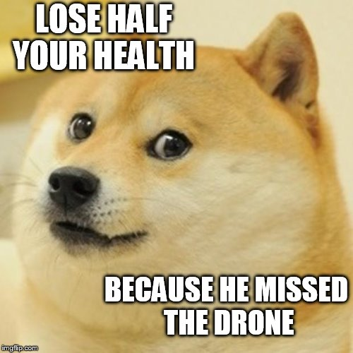 Doge | LOSE HALF YOUR HEALTH BECAUSE HE MISSED THE DRONE | image tagged in memes,doge | made w/ Imgflip meme maker