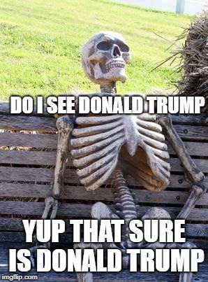 Waiting Skeleton Meme | DO I SEE DONALD TRUMP YUP THAT SURE IS DONALD TRUMP | image tagged in memes,waiting skeleton | made w/ Imgflip meme maker