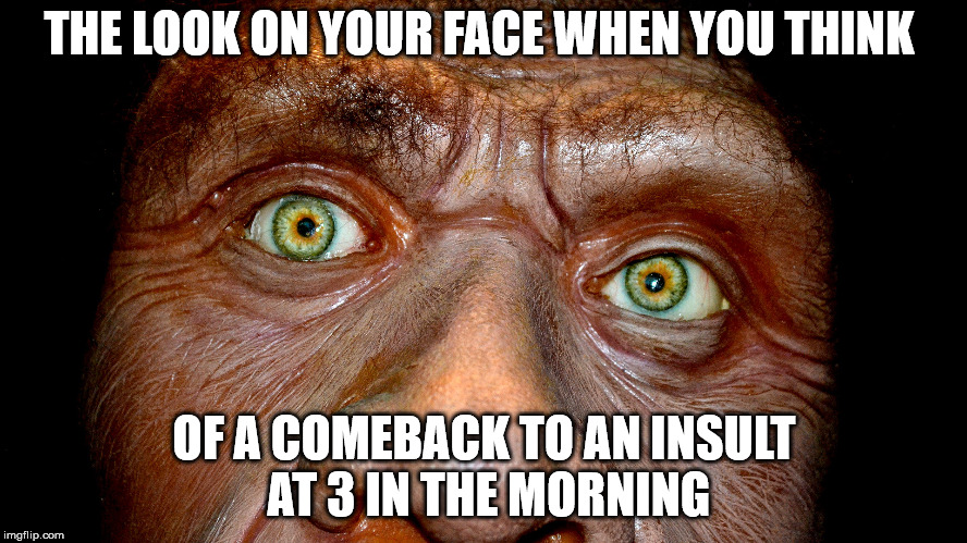 THE LOOK ON YOUR FACE WHEN YOU THINK OF A COMEBACK TO AN INSULT AT 3 IN THE MORNING | image tagged in real life | made w/ Imgflip meme maker