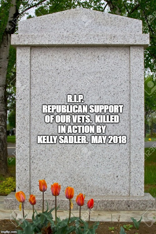 blank gravestone | R.I.P.         REPUBLICAN SUPPORT OF OUR VETS.  KILLED IN ACTION BY KELLY SADLER.  MAY 2018 | image tagged in blank gravestone | made w/ Imgflip meme maker