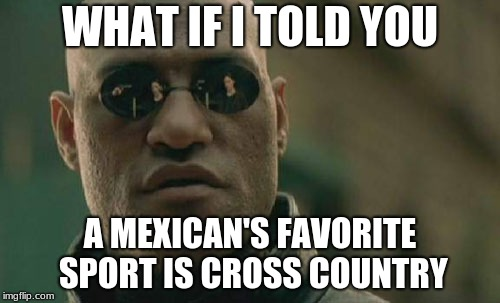 Matrix Morpheus Meme | WHAT IF I TOLD YOU A MEXICAN'S FAVORITE SPORT IS CROSS COUNTRY | image tagged in memes,matrix morpheus | made w/ Imgflip meme maker