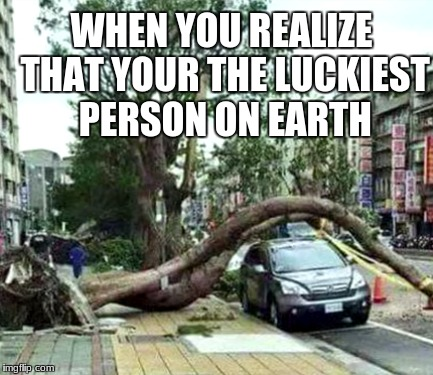 SOOO Lucky | WHEN YOU REALIZE THAT YOUR THE LUCKIEST PERSON ON EARTH | image tagged in lucky,car,tree,bend over,what,road | made w/ Imgflip meme maker