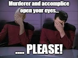 Star Trek Double Facepalm | Murderer and accomplice open your eyes... .... PLEASE! | image tagged in star trek double facepalm,deduction,hidden role,board game,tabletop | made w/ Imgflip meme maker