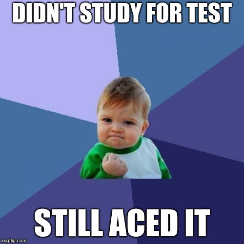 Success Kid Meme | DIDN'T STUDY FOR TEST STILL ACED IT | image tagged in memes,success kid | made w/ Imgflip meme maker