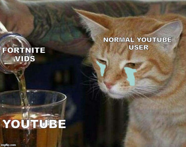 sad cat drinking booze | FORTNITE VIDS YOUTUBE NORMAL YOUTUBE USER | image tagged in sad cat drinking booze,scumbag | made w/ Imgflip meme maker