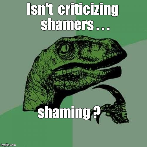 Shame On You! | Isn't  criticizing  shamers . . . shaming ? | image tagged in memes,philosoraptor | made w/ Imgflip meme maker