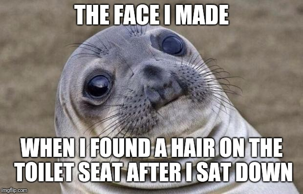 Awkward Moment Sealion Meme | THE FACE I MADE WHEN I FOUND A HAIR ON THE TOILET SEAT AFTER I SAT DOWN | image tagged in memes,awkward moment sealion | made w/ Imgflip meme maker