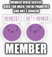 i memba | MEMBER WHEN SAVAGE USED TOO MEAN TOO BE PRIMITIVE AND NOT A DOUCEH MEMBER | image tagged in member berries | made w/ Imgflip meme maker