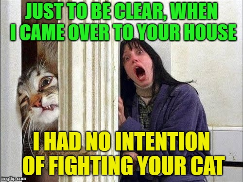 Cat fight? | JUST TO BE CLEAR, WHEN I CAME OVER TO YOUR HOUSE I HAD NO INTENTION OF FIGHTING YOUR CAT | image tagged in memes,funny,cat,attack,fight | made w/ Imgflip meme maker