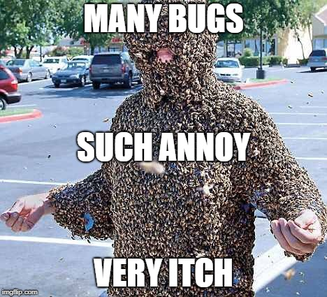 MANY BUGS VERY ITCH SUCH ANNOY | image tagged in bugs | made w/ Imgflip meme maker