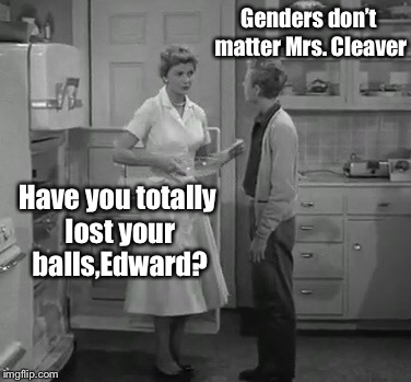 Genders don't matter Mrs. Cleaver Have you totally lost your balls,Edward? | made w/ Imgflip meme maker