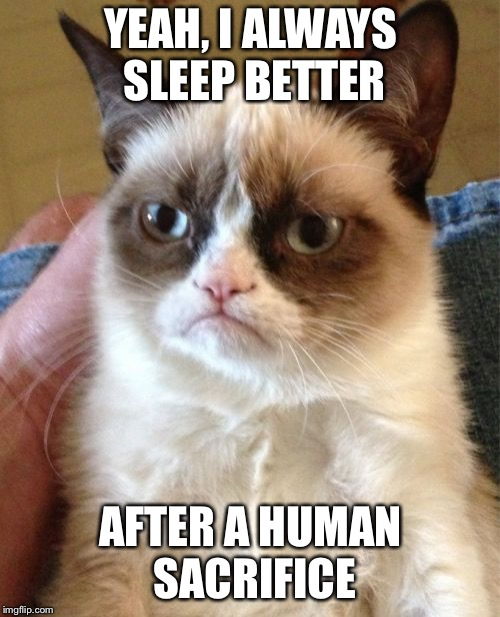 Grumpy Cat Meme | YEAH, I ALWAYS SLEEP BETTER AFTER A HUMAN SACRIFICE | image tagged in memes,grumpy cat | made w/ Imgflip meme maker