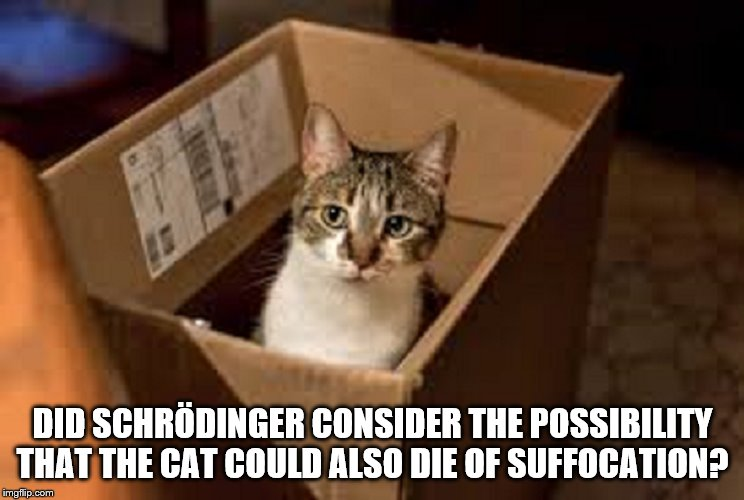 DID SCHRÖDINGER CONSIDER THE POSSIBILITY THAT THE CAT COULD ALSO DIE OF SUFFOCATION? | image tagged in schrodinger's cat,another possibility | made w/ Imgflip meme maker