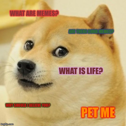 Doge | WHAT ARE MEMES? ARE THERE GOOD MEMES? WHAT IS LIFE? WHY SHOULD I BELIEVE YOU? PET ME | image tagged in memes,doge | made w/ Imgflip meme maker