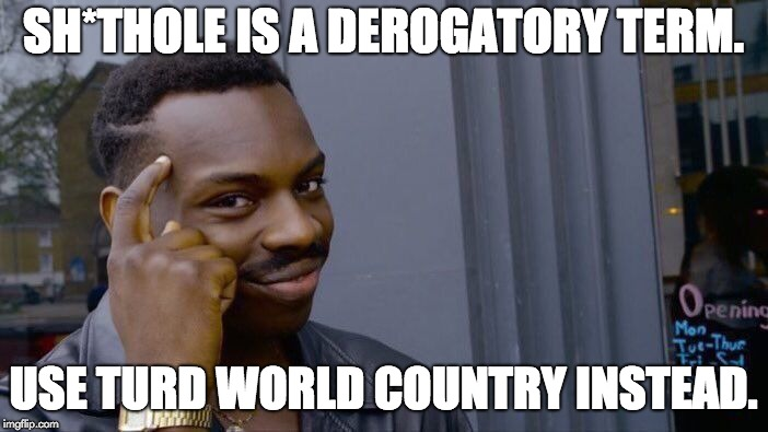 Roll Safe Think About It | SH*THOLE IS A DEROGATORY TERM. USE TURD WORLD COUNTRY INSTEAD. | image tagged in memes,roll safe think about it | made w/ Imgflip meme maker