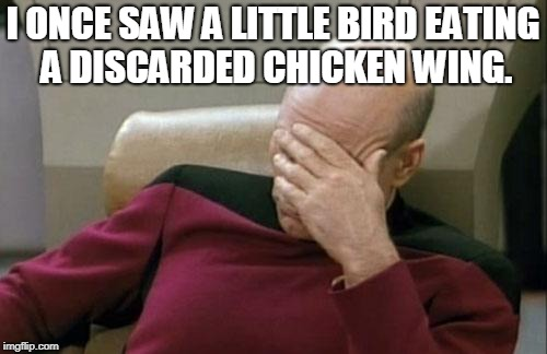 Captain Picard Facepalm Meme | I ONCE SAW A LITTLE BIRD EATING A DISCARDED CHICKEN WING. | image tagged in memes,captain picard facepalm | made w/ Imgflip meme maker