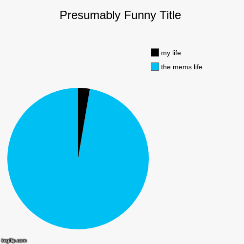 the mems life, my life | image tagged in funny,pie charts | made w/ Imgflip pie chart maker