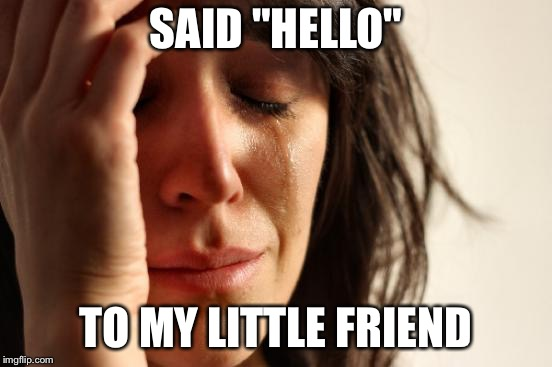 "First World Problems Meme | SAID ""HELLO"" TO MY LITTLE FRIEND 