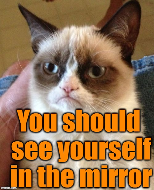 Grumpy Cat Meme | You should see yourself in the mirror | image tagged in memes,grumpy cat | made w/ Imgflip meme maker