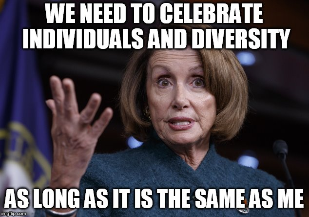 Good old Nancy Pelosi | WE NEED TO CELEBRATE INDIVIDUALS AND DIVERSITY AS LONG AS IT IS THE SAME AS ME | image tagged in good old nancy pelosi | made w/ Imgflip meme maker