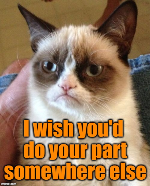 Grumpy Cat Meme | I wish you'd do your part somewhere else | image tagged in memes,grumpy cat | made w/ Imgflip meme maker