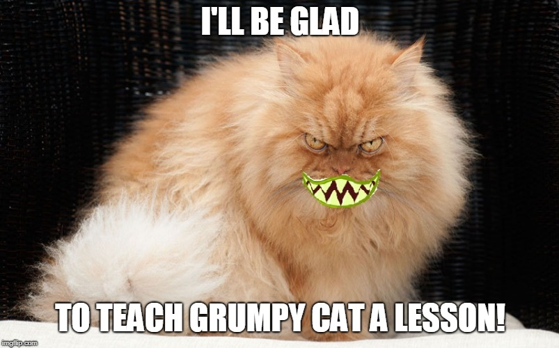 Angry Cat Smiling | I'LL BE GLAD TO TEACH GRUMPY CAT A LESSON! | image tagged in angry cat smiling | made w/ Imgflip meme maker