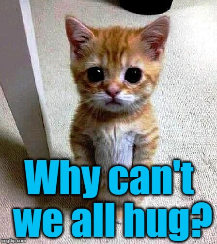 Why can't we all hug? | made w/ Imgflip meme maker