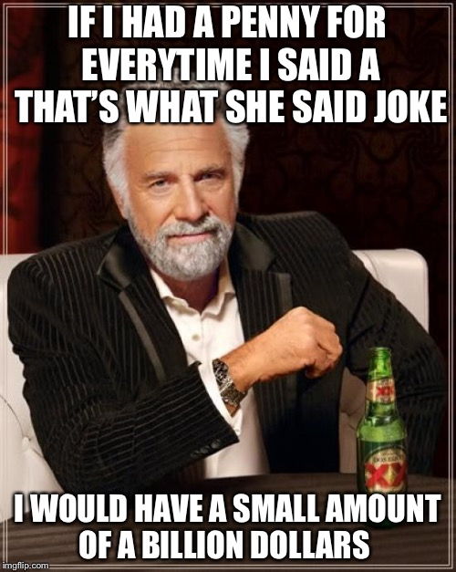 The Most Interesting Man In The World Meme | IF I HAD A PENNY FOR EVERYTIME I SAID A THAT'S WHAT SHE SAID JOKE I WOULD HAVE A SMALL AMOUNT OF A BILLION DOLLARS | image tagged in memes,the most interesting man in the world | made w/ Imgflip meme maker