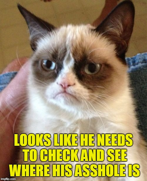 Grumpy Cat Meme | LOOKS LIKE HE NEEDS TO CHECK AND SEE WHERE HIS ASSHOLE IS | image tagged in memes,grumpy cat | made w/ Imgflip meme maker