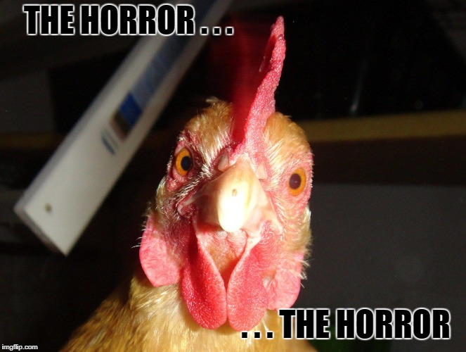 THE HORROR . . . . . . THE HORROR | made w/ Imgflip meme maker