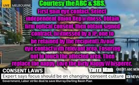 Courtesy the ABC & SBS. Yarra Man First gain eye contact. Select independent Union Rep witness. Obtain firm optical consent, then obtain sig | image tagged in nappy whisper rules | made w/ Imgflip meme maker