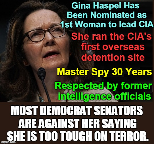 Is the Pro-Woman Party Voting Against a Woman to Head CIA Cuz She's a Woman? | Master Spy 30 Years She ran the CIA's first overseas detention site Gina Haspel Has Been Nominated as 1st Woman to lead CIA Respected by for | image tagged in vince vance,gina haspel,cia,democrats are soft on terrorists,nominee for director of cia,president trump | made w/ Imgflip meme maker