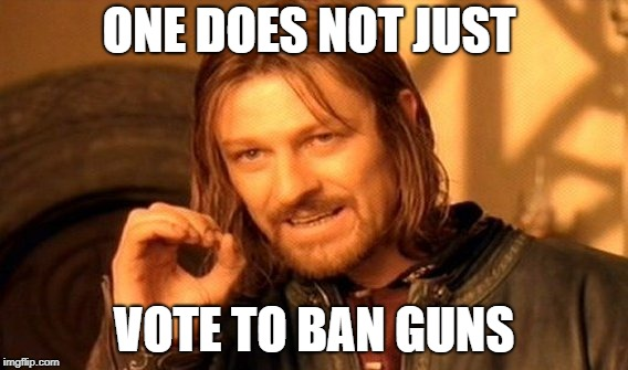 One Does Not Simply Meme | ONE DOES NOT JUST VOTE TO BAN GUNS | image tagged in memes,one does not simply | made w/ Imgflip meme maker